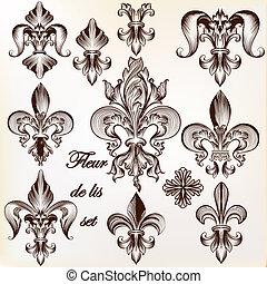 de, coleção real, fleur, vetorial, desenho, lis
