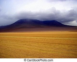 de, desierto, サルバドール, dalã
