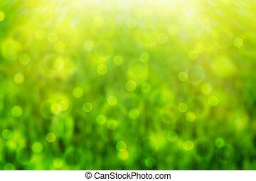de-focused green backround