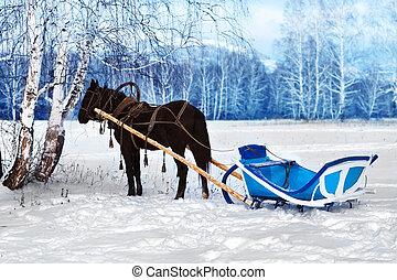 de kar van het paard