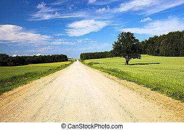 de, landelijke straat
