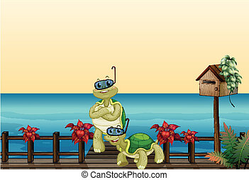 de madera, al lado de, dos, tortugas, buzón