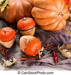 de madera, encima,  -, acción de gracias, otoño, calabazas, Plano de fondo, naranja, tabla, calabaza