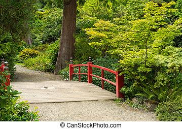 de madera, japonés, puente pie