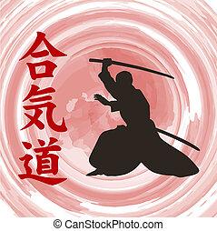 de, man, optredens, aikido.