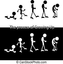 de, man, van, jonge, om te, oud, schematisch, figuren