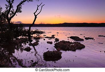 de marea, puesta de sol, paisaje, shallows