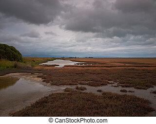 de marea, reserva de naturaleza