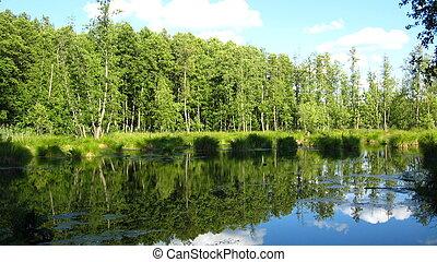 de, mooi, zomer, landscape, met