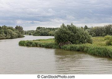 """""""de, netherlands, 国立公園, biesbosch"""", 泥地"""