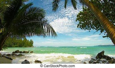 de, oever, van, een, tropisch strand, met, palmbomen