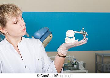 de, ontvangst, was, op, de, vrouwlijk, dentist., tandarts, vasthouden, een, dentaal, casts.
