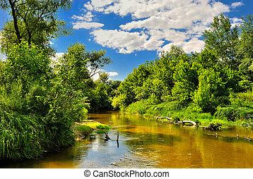 de, rivier, in, de, hout