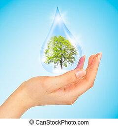 de, symbool, van, sparen, groene planeet