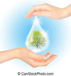 de, symbool, van, sparen, groene, planet.