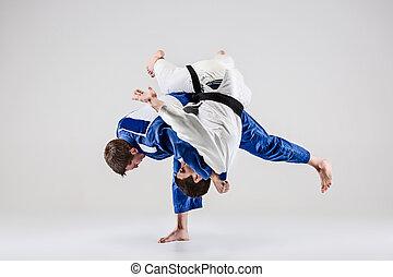 de, twee, judokas, vechters, vecht, mannen