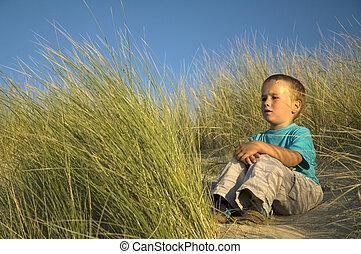 de zitting van de jongen, in, de, duinen