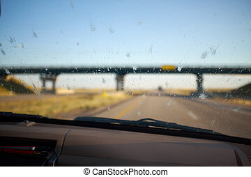 Dead bugs splattered on the windscreen of a car killed by...