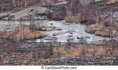 Dead forest and river in vicinity of Nickel plant -...