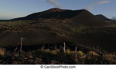 Dead Forest near volcanoes.