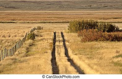 Dead grass covered Saskatchewan dirt trail
