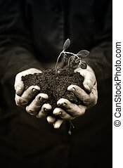 Agricultural worker holding a dead plant in the soil. Ecology, environmental, nature preservation concept. Monochromatic image.