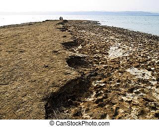 Dead sea love