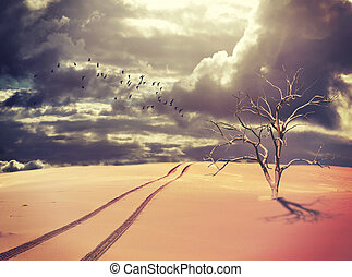 Dead tree and vehicle tracks in desert landscape