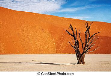 Namib desert - Dead tree in Dead Vlei, Sossusvlei, Namib ...