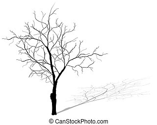 Dead tree isolated on white background, EPS 10.