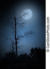 Dead tree in a full moon night. Added some digital noise