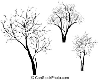 Dead Tree without Leaves Vector Illustration , EPS 10.