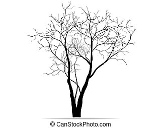 Dead Tree without Leaves Vector Illustration Sketched, EPS ...