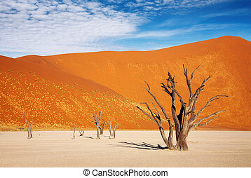 Namib Desert - Dead trees in Dead Vlei - Sossusvlei, Namib ...
