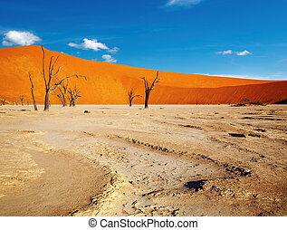Namib Desert - Dead trees in Dead Vlei - Sossusvlei, Namib...