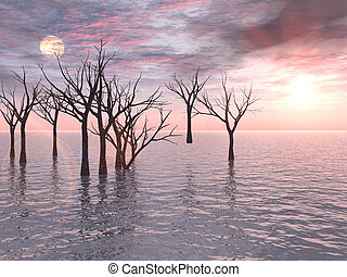 Dead Trees Sunset - A group of dead trees standing in water ...