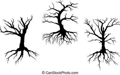 Dead trees with stem and roots isolated on white background...