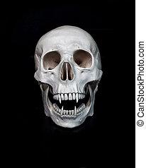 Dead vampire. Human skull with vampire fangs