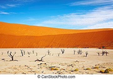 Namib Desert - Dead Vlei - Sossusvlei, Namib Desert, Namibia