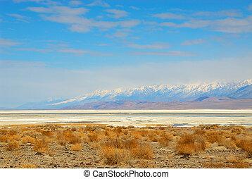 Death Valley Salt Pan