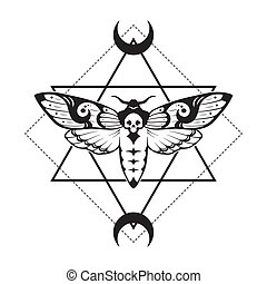 Deaths head hawk moth and sacred geometry with moon phases ...