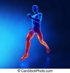 debilidad, concepto, fatiga, agotamiento, músculo