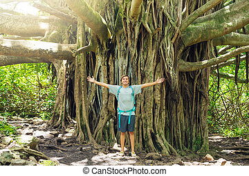 debout, banian, incroyable, arbre, devant, homme