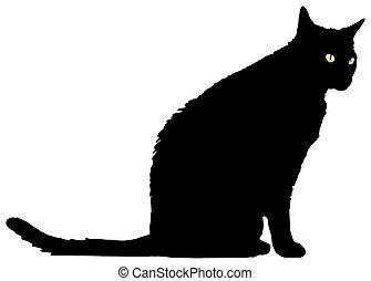debout, chat noir