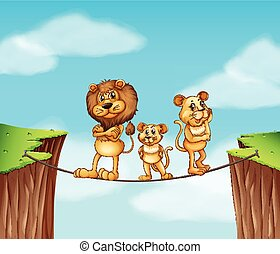 debout, corde, lions