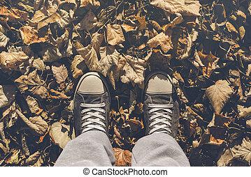 debout, dans, sec, feuilles automne