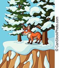 debout, falaise, renard, horaire hiver