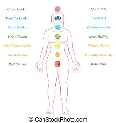 debout, femme, meanings, description, chakras, méditation