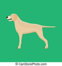 debout, friend., silhouette, labrador, icône, brun, chouchou, chien, canin, isolé, vecteur, mignon, animal, vue., chiot, côté, dessin animé, heureux
