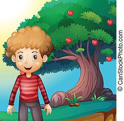 debout, garçon, arbre, pomme, devant